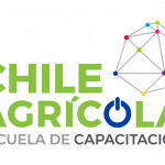 Andrea de ChileAgrícola